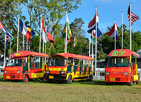 Suriname Tuk Tuk Tour: City & Shopping
