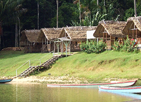 Suriname Multi-Day Tour: 3/4/5 Dagen Danpaati