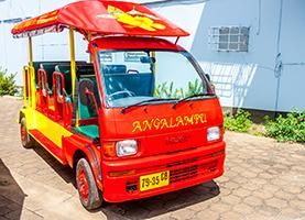 Suriname Tuk Tuk Tour: Plantage Peperpot