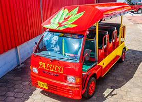 Suriname Tuk Tuk Tour: Beach Tour 'White Beach'