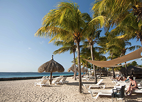 Plaza Beach Resort Bonaire (All Inclusive)