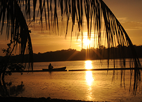 Suriname, Roundtrip: 15 Days Enjoy Suriname