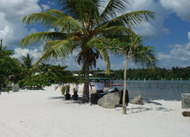Suriname, Dagtour: White Beach