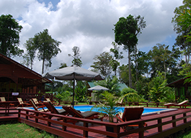 Suriname Multi-Day Tour: 3/4/5 Dagen Anaula Nature Resort