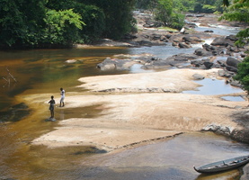 Suriname Multi-Day Tour: 4/5 Days Awarradam