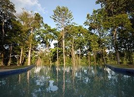 Suriname Multi-Day Tour: 2/3/4 Dagen Berg en Dal Eco & Cultural River Resort