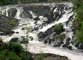 Suriname Multi-Day Tour: 4 Days Blanche Marie Waterfalls
