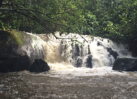 Suriname Multi-Day Tour: 4 Days Raleigh Waterfalls